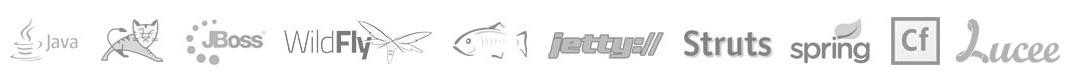 java tomcat jboss WildFly glassfish jetty struts spring coldfusion mongodb hibernate